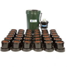 IWS Flood and Drain 36 Pot System